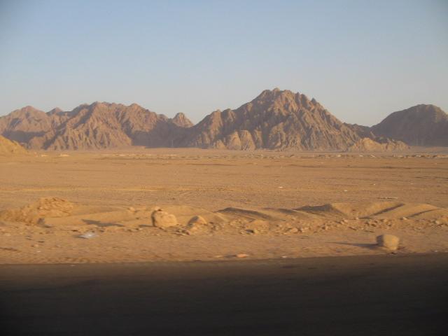 Profughi rapiti sul Sinai, Zerai: «una donna sta per partorire, servono soccorsi immediati»