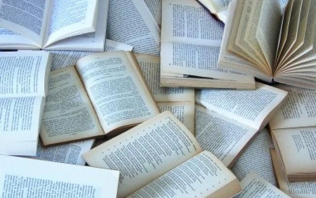 """Biblioteche italiane verso l'addio al catalogo unico online, """"Non ci sono i soldi"""""""