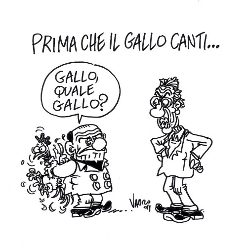 Silvio e Umberto ai ferri corti (vignetta)