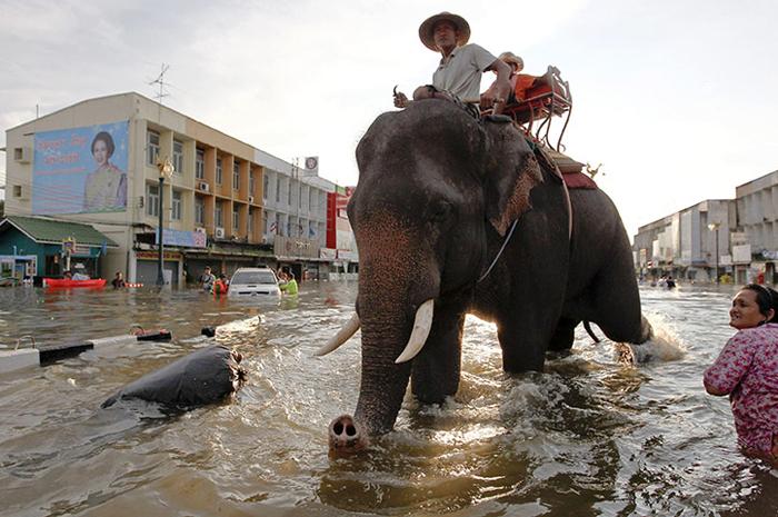 Thailandia: l'alluvione che sta mettendo in ginocchio la popolazione