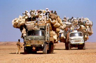 """""""Non siamo numeri"""", il viaggio di 15 persone nel deserto"""