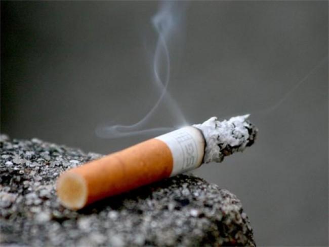 Italia, il tabacco che rende