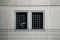 """Carceri, tra suicidi e """"casi da accertare"""""""