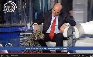 Bersani e il giaguaro (di peluche)