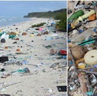 Henderson, l'isola di plastica, già anni fa l'allarme degli scienziati